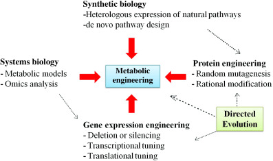 Biotechnological Tools To Enhance Sustainable Production Sciencedirect