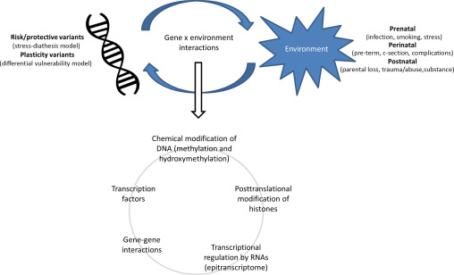 Gene Environment Interaction >> Gene Environment Interactions In High Risk Populations