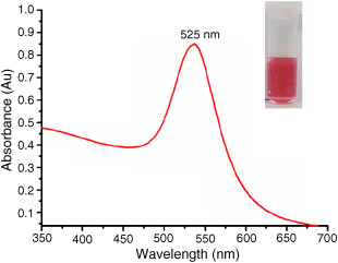UV/VIS Absorption Spectrophotometry - an overview | ScienceDirect Topics