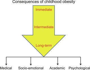 Childhood Obesity Factors Consequences And Intervention Sciencedirect