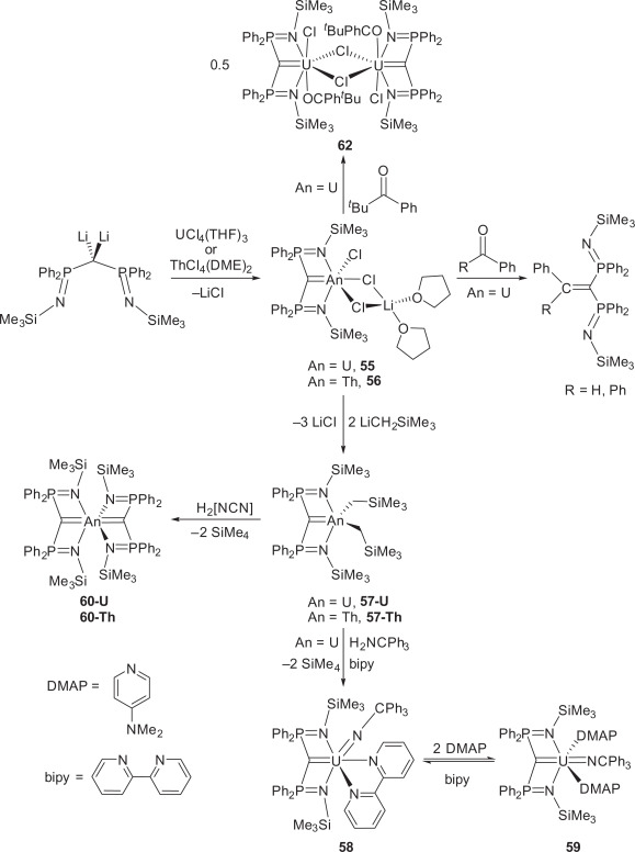 Actinide Pincer Chemistry A New Frontier