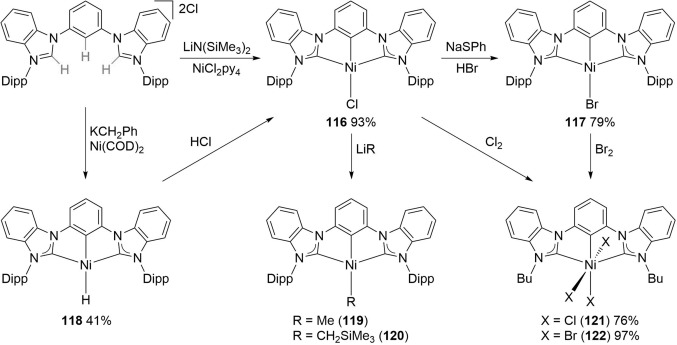 CCC-NHC Pincer Complexes: Synthesis, Applications, and