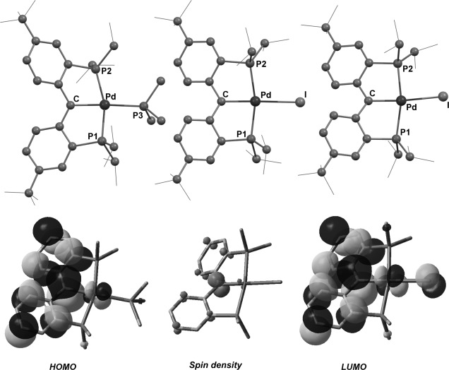 Pincer Carbenoid Complexes With Late Transition Metals