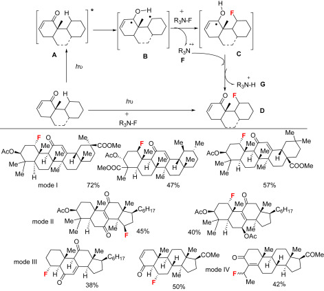 Aliphatic Amide - an overview   ScienceDirect Topics
