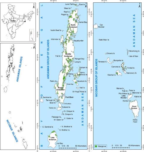 Marine Ecosystems of Andaman and Nicobar Islands – Species ... on