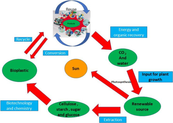 Bio-plastics and Biofuel: Is it the Way in Future