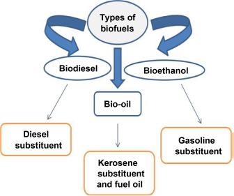Generation Biofuels - an overview | ScienceDirect Topics