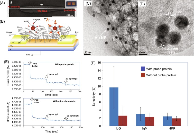 Vertical graphene for biosensors sciencedirect a sem image of a sensor fabricated by direct growth of vgs between au electrodes b schematics of the vg based fet biosensor c and d tem images of fandeluxe Choice Image