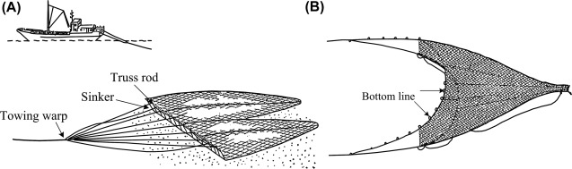 Fishing Operation - an overview | ScienceDirect Topics