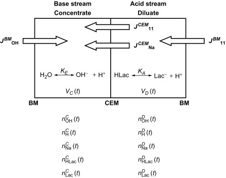 Sodium Lactate - an overview   ScienceDirect Topics