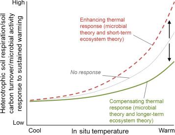 Temperature sensitivity of soil carbon - ScienceDirect