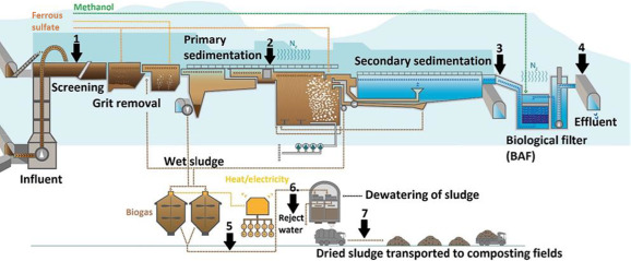 Waste Water Treatment Plant An Overview Sciencedirect Topics