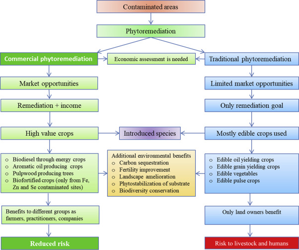Market Opportunities: in Sustainable Phytoremediation