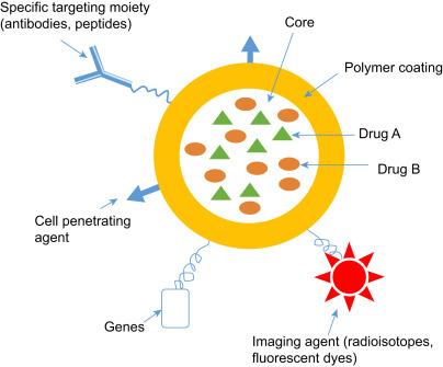 Nanotechnology Toward Treating Cancer: A Comprehensive Review