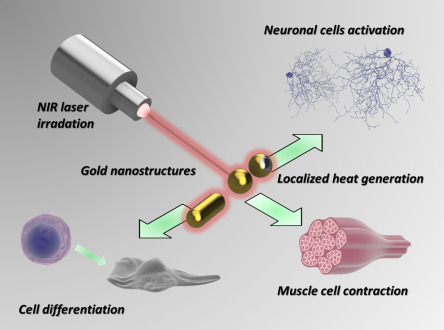 Smart Inorganic Nanoparticles for Wireless Cell Stimulation