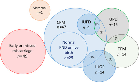 Genome-Wide Cell-Free DNA-Based Prenatal Testing for Rare Autosomal