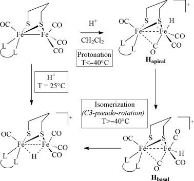 13C{1H}-NMR Spectroscopy - an overview | ScienceDirect Topics