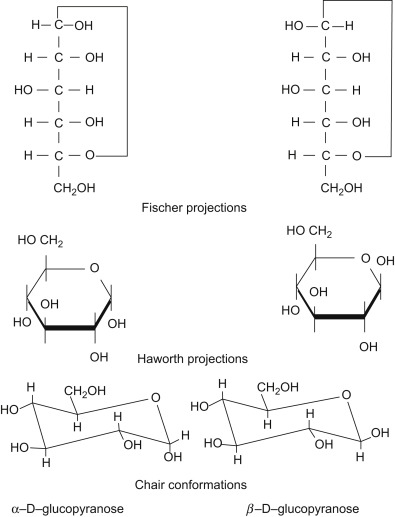 Ketohexose An Overview Sciencedirect Topics