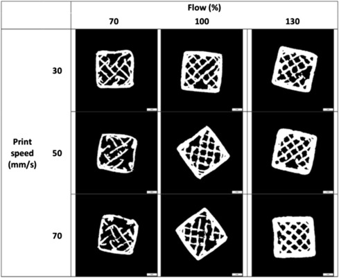 Critical Variables in 3D Food Printing - ScienceDirect