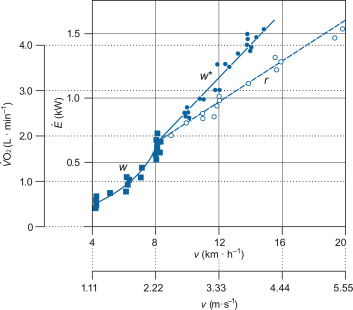 Energy Cost of Human Locomotion on Land and in Water