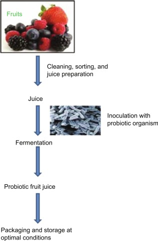 Probiotic fruit juice thesis us history photo essay