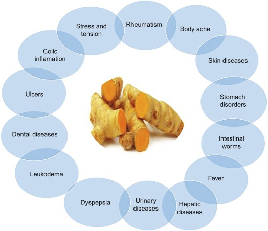 Turmeric - an overview | ScienceDirect Topics