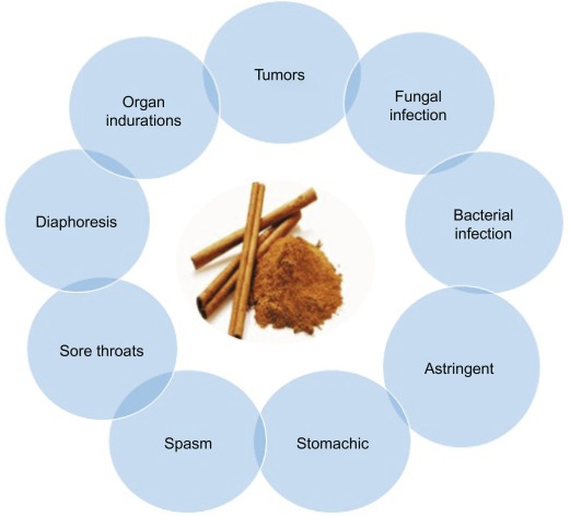 Nutritional and Therapeutic Potential of Spices - ScienceDirect