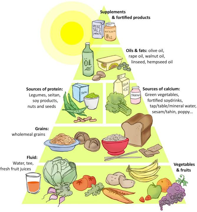 Phase-2-Protein-Diät