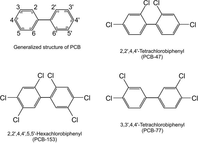 Polychlorinated Biphenyl - an overview | ScienceDirect Topics