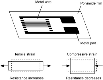 Metal Strain Gauge - an overview | ScienceDirect Topics