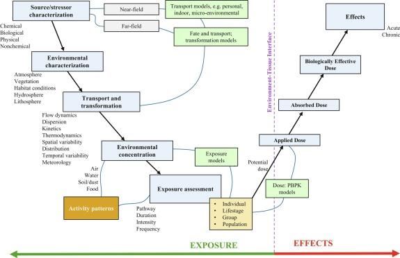Waste Constituent Pathways - ScienceDirect