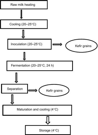 Kefir - an overview   ScienceDirect Topics
