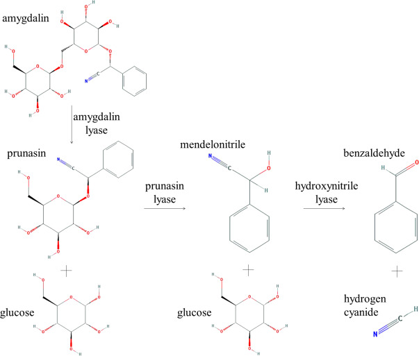 Toxicological Aspects of Ingredients Used in Nonalcoholic