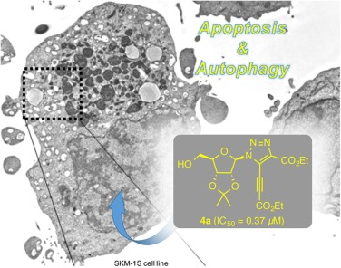 Cycloaddition reactions for anticancer compounds - ScienceDirect