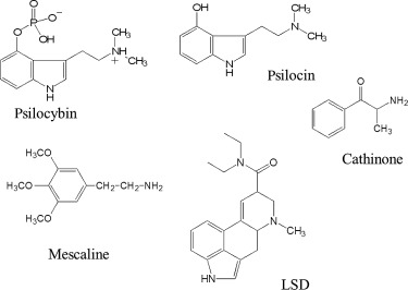 Psilocybin - an overview | ScienceDirect Topics