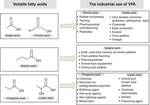 Petrochemical Industry - an overview | ScienceDirect Topics