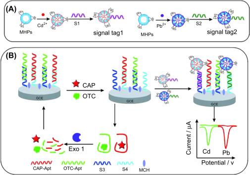 Aptamer-based electrochemical biosensors - ScienceDirect