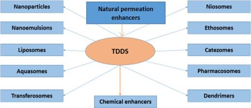 Nanodrug delivery systems for transdermal drug delivery