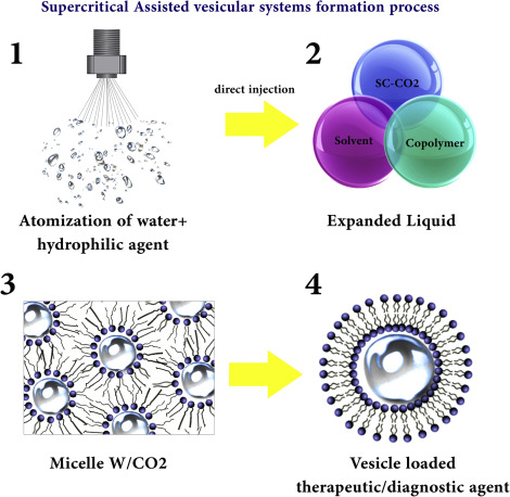 Supercritical Fluid Technology An Overview Sciencedirect Topics