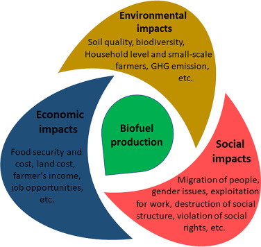 Social Aspects - an overview | ScienceDirect Topics