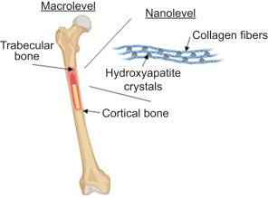 poate exista artroza tuturor articulațiilor