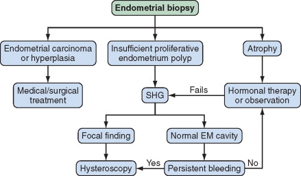 Endometrial Biopsy - an overview | ScienceDirect Topics