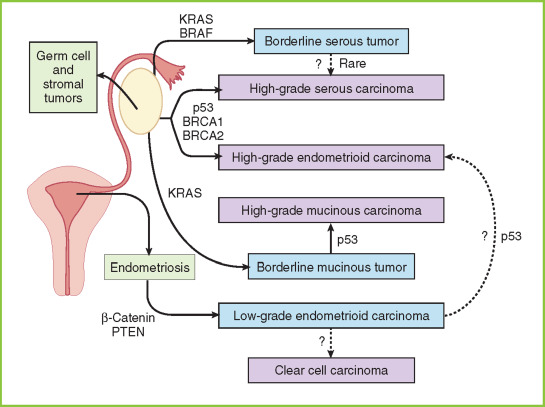 Borderline Personality Disorder - an overview | ScienceDirect Topics