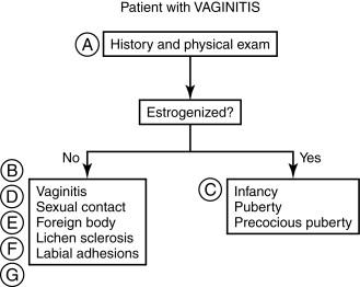 Vaginitis - an overview   ScienceDirect Topics