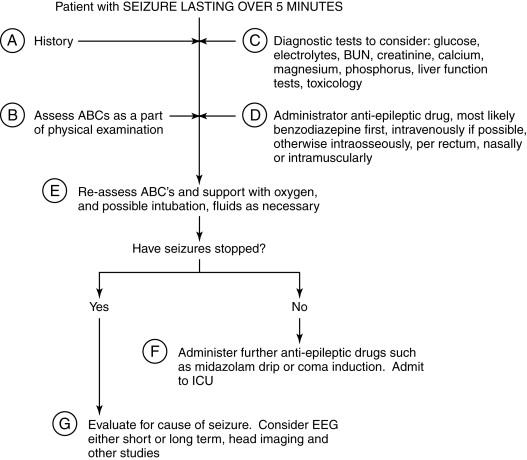 Status Epilepticus - an overview | ScienceDirect Topics
