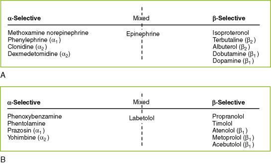Methoxamine - an overview | ScienceDirect Topics