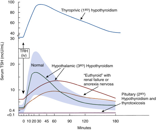 Protirelin Test - an overview | ScienceDirect Topics