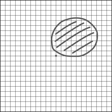 Amsler Grid - an overview | ScienceDirect Topics