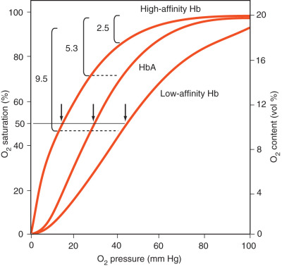 Oxygen Dissociation Curve - an overview | ScienceDirect Topics