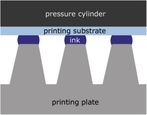 Flexographic Printing - an overview | ScienceDirect Topics